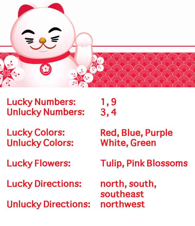 ox lucky and unlucky signs